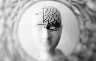 neuroscienze apprendimento personalizzato